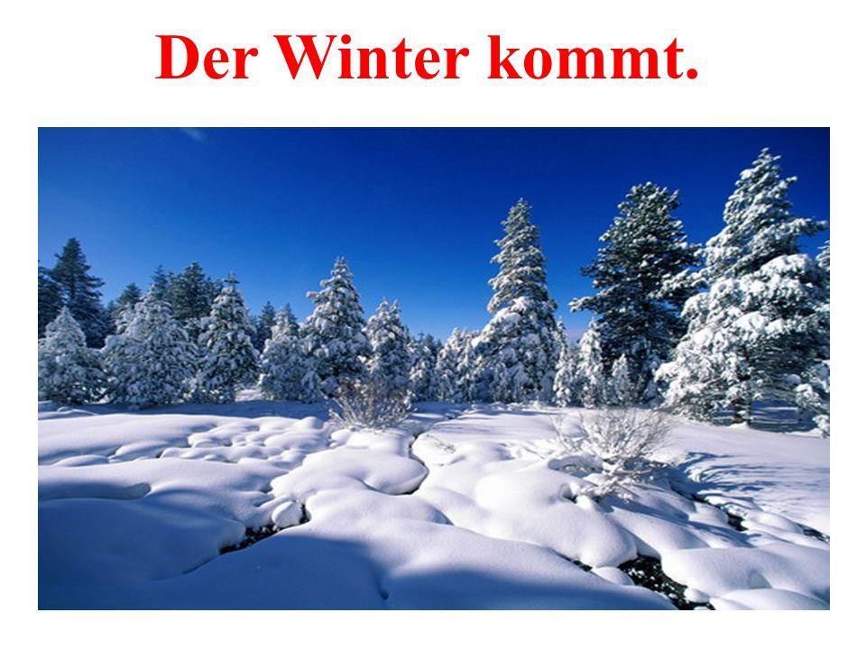 Der Winter kommt.