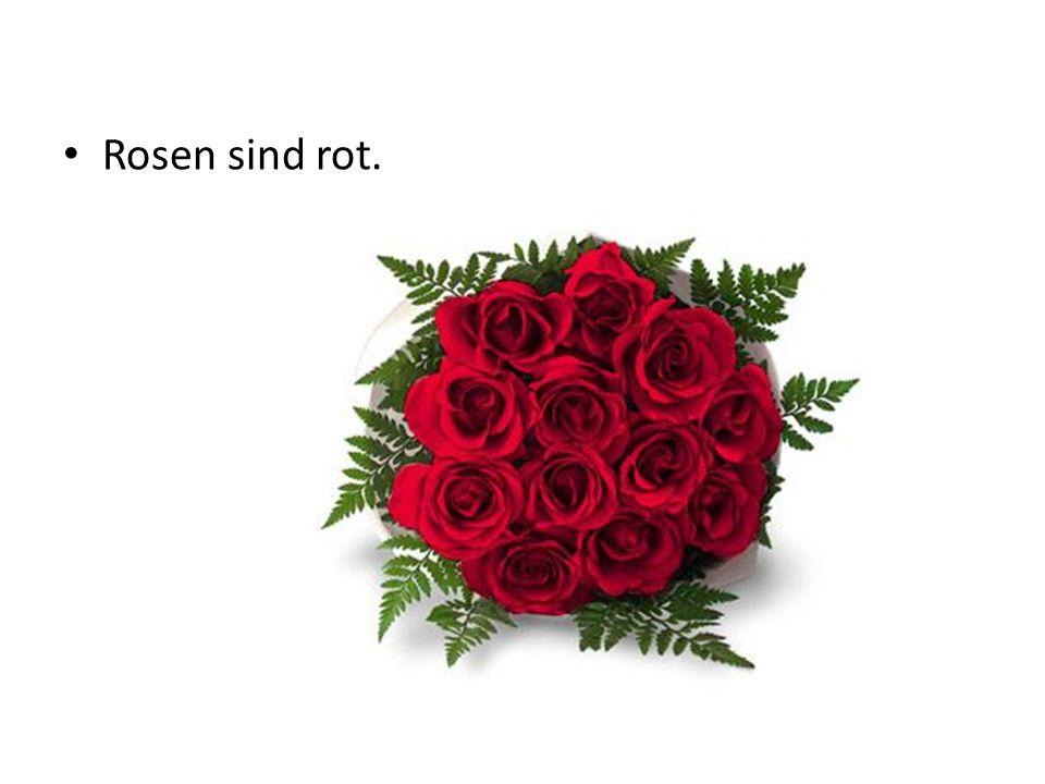 Rosen sind rot.
