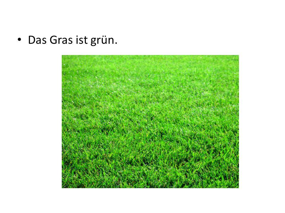 Das Gras ist grün.