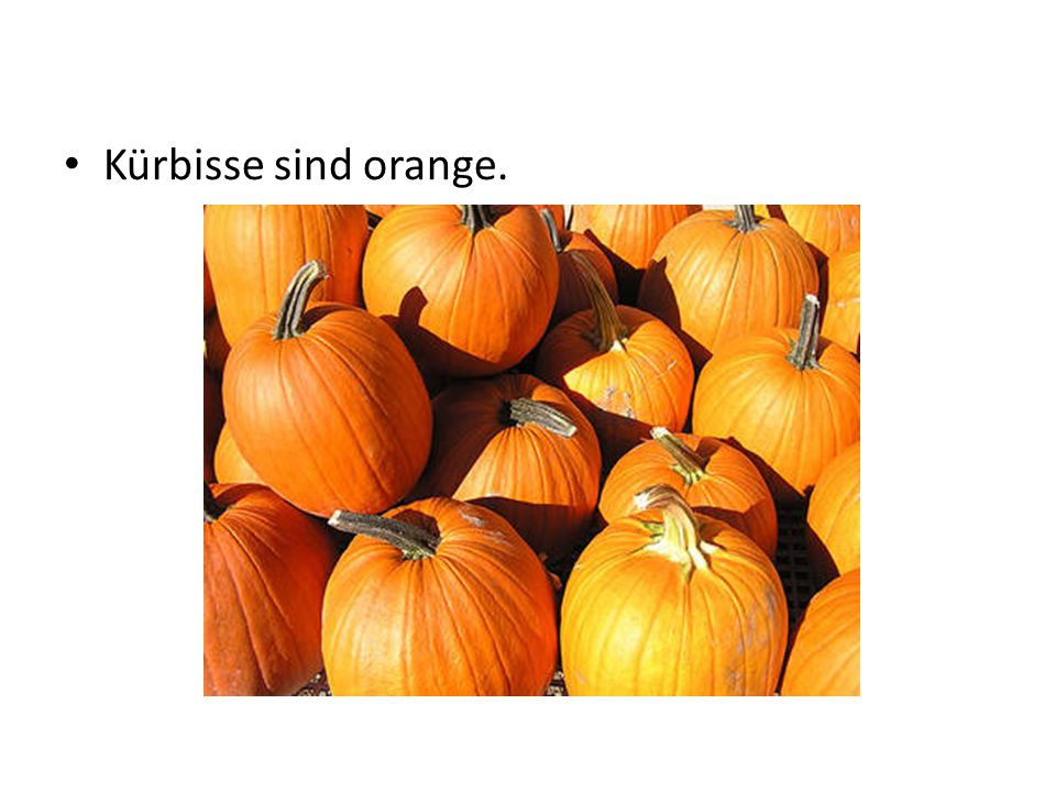 Kürbisse sind orange.