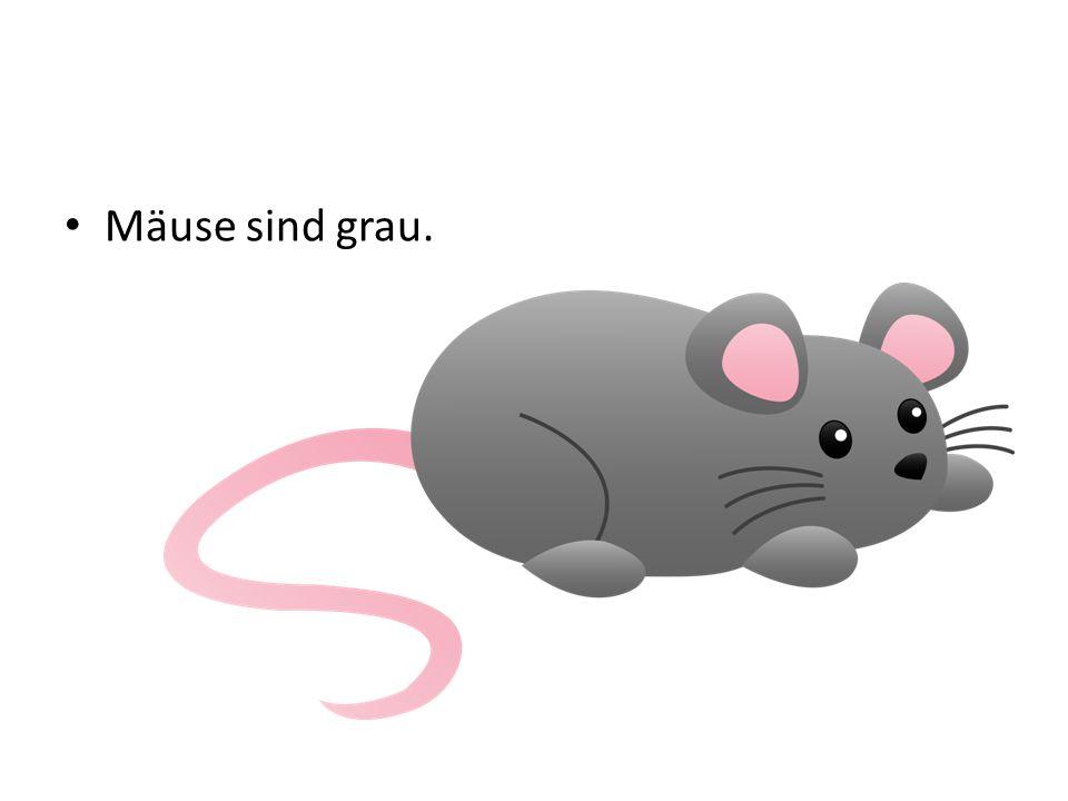 Mäuse sind grau.