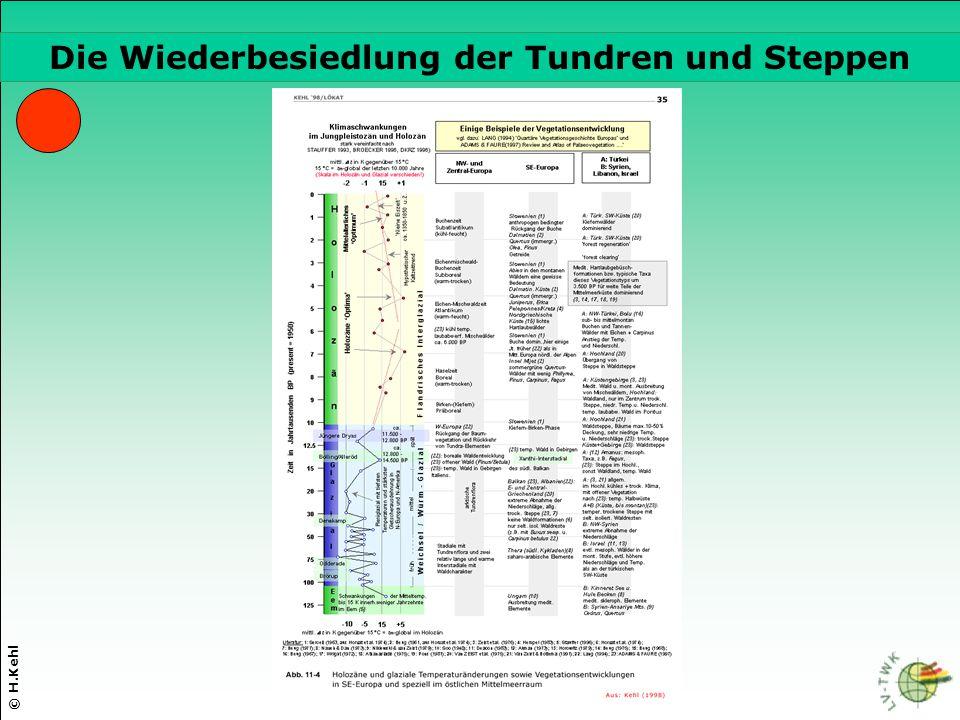 Die Wiederbesiedlung der Tundren und Steppen