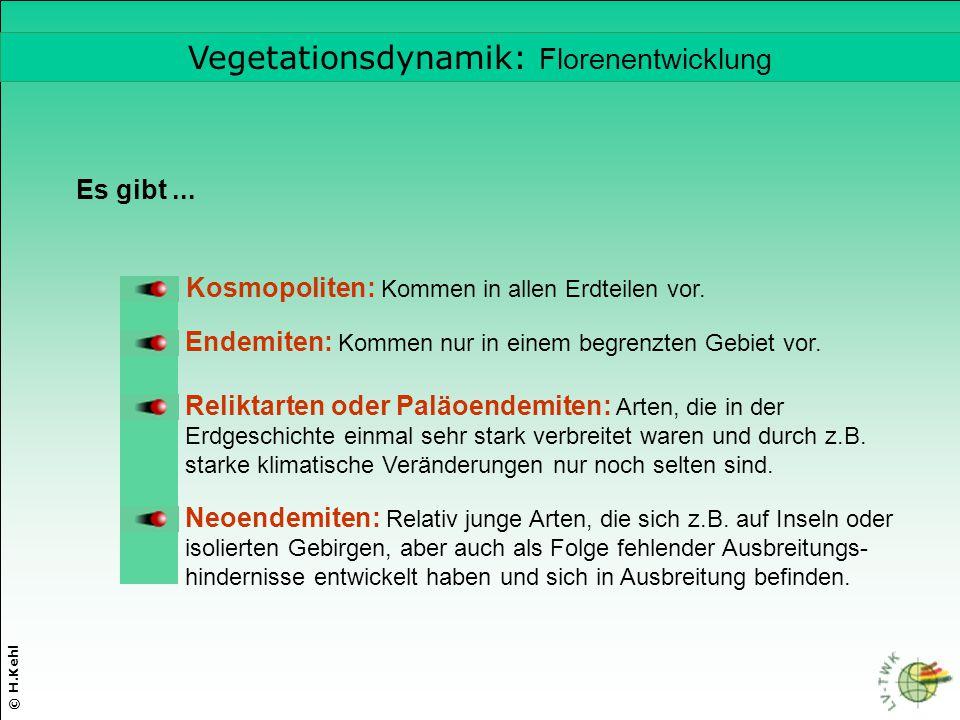 Vegetationsdynamik: Florenentwicklung