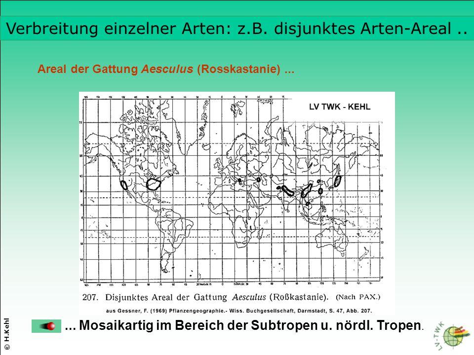 Verbreitung einzelner Arten: z.B. disjunktes Arten-Areal ..
