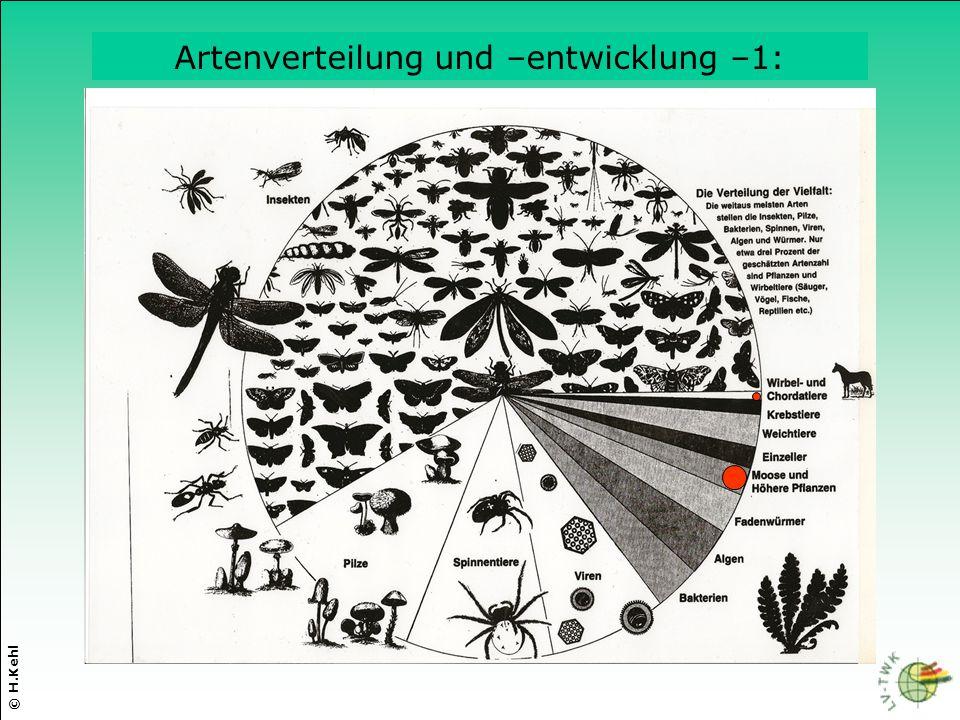 Artenverteilung und –entwicklung –1: