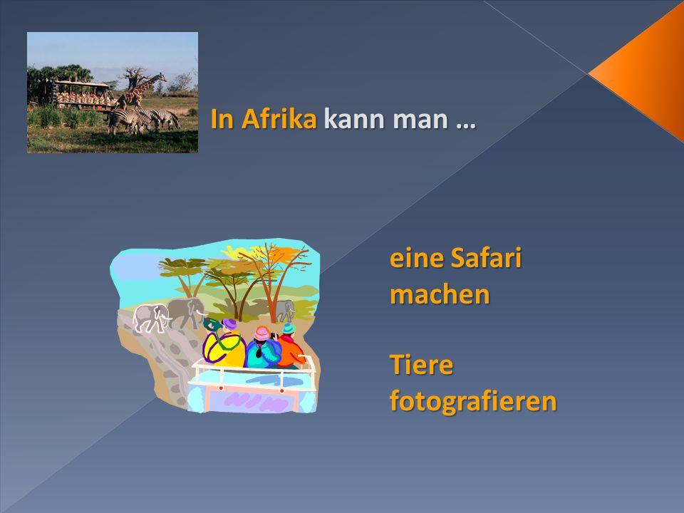 In Afrika kann man … eine Safari machen Tiere fotografieren