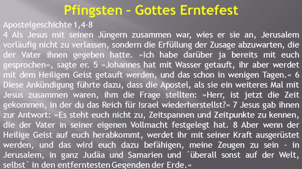 Pfingsten – Gottes Erntefest