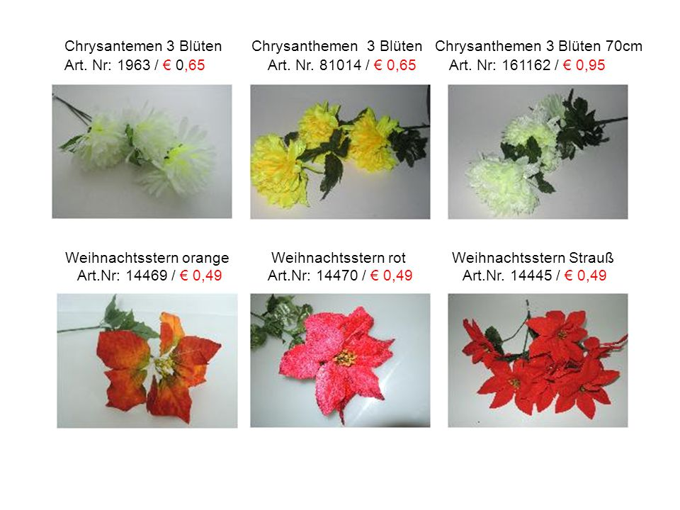Chrysantemen 3 Blüten Chrysanthemen 3 Blüten Chrysanthemen 3 Blüten 70cm Art. Nr: 1963 / € 0,65 Art. Nr. 81014 / € 0,65 Art. Nr: 161162 / € 0,95