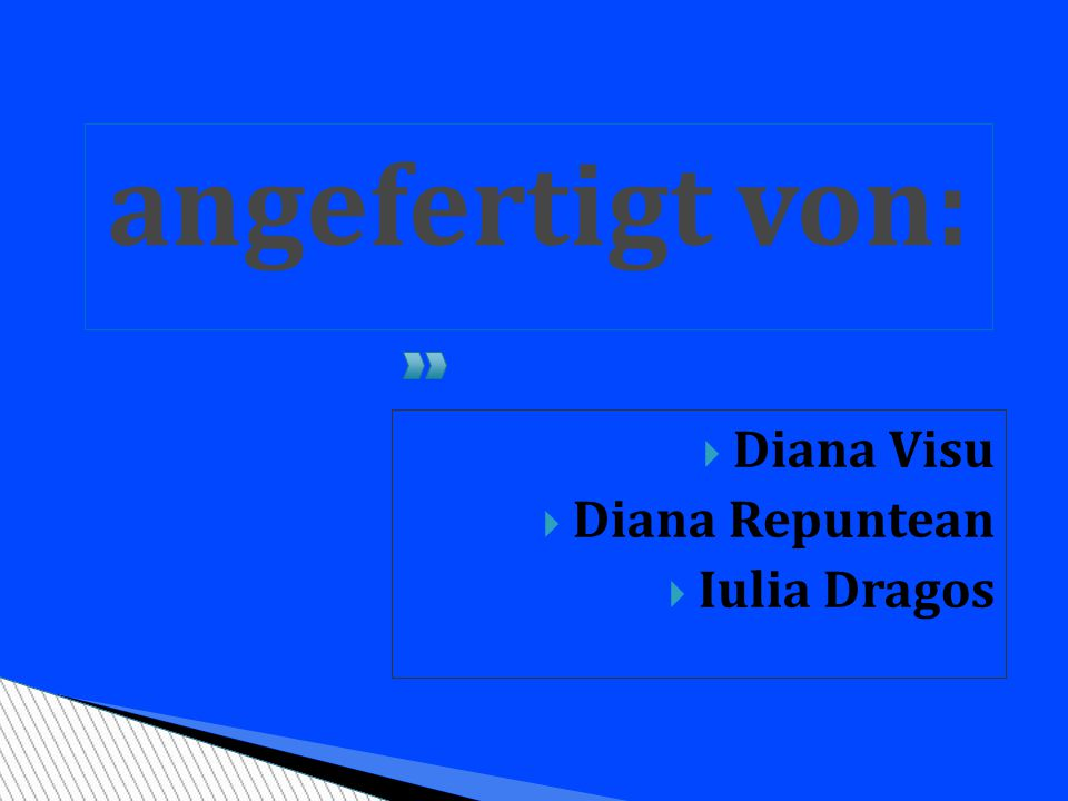 angefertigt von: Diana Visu Diana Repuntean Iulia Dragos