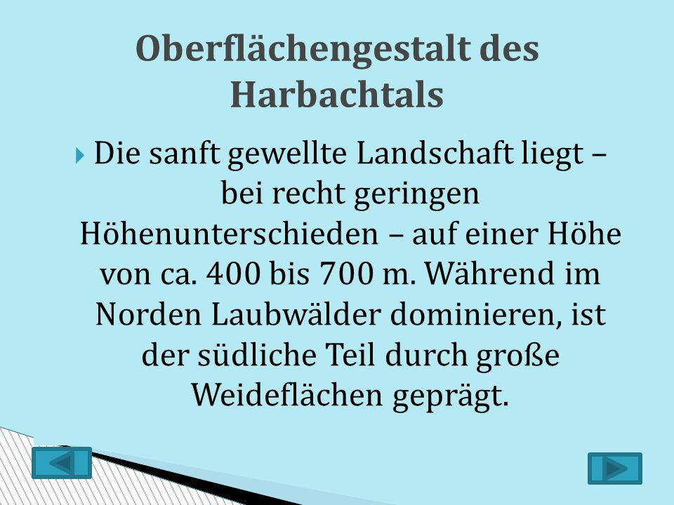 Oberflächengestalt des Harbachtals