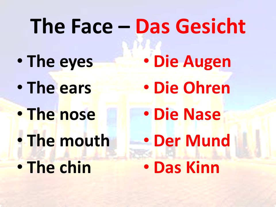 The Face – Das Gesicht The eyes The ears The nose The mouth The chin