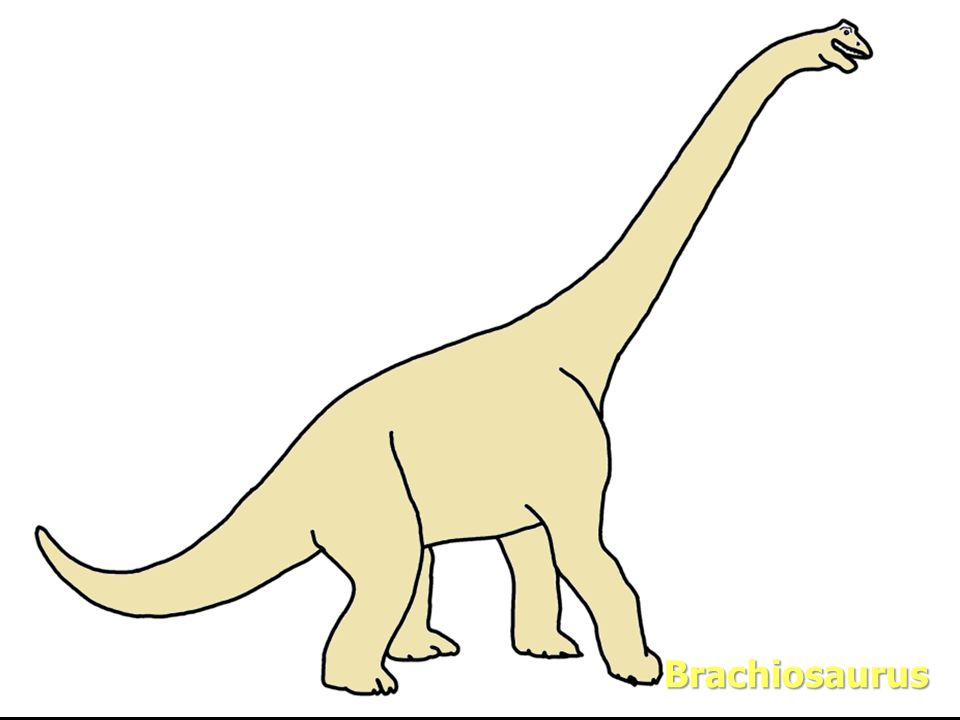 Evolution Brachiosaurus