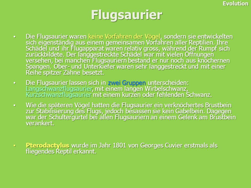 Evolution Flugsaurier.