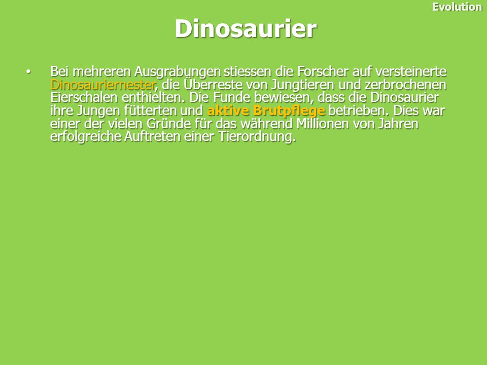 Evolution Dinosaurier.