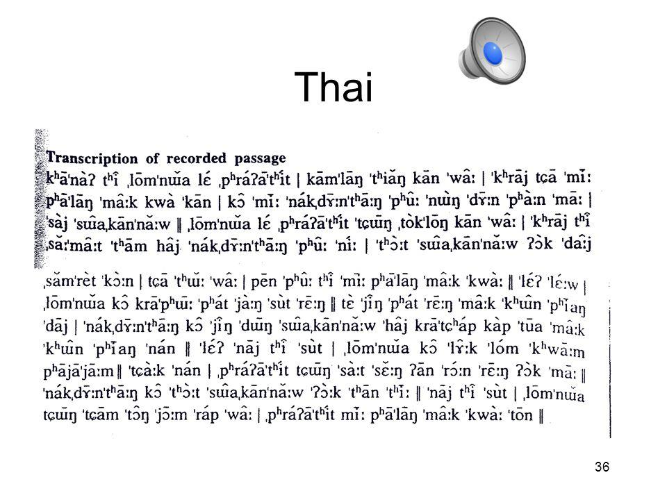 Thai 36 36
