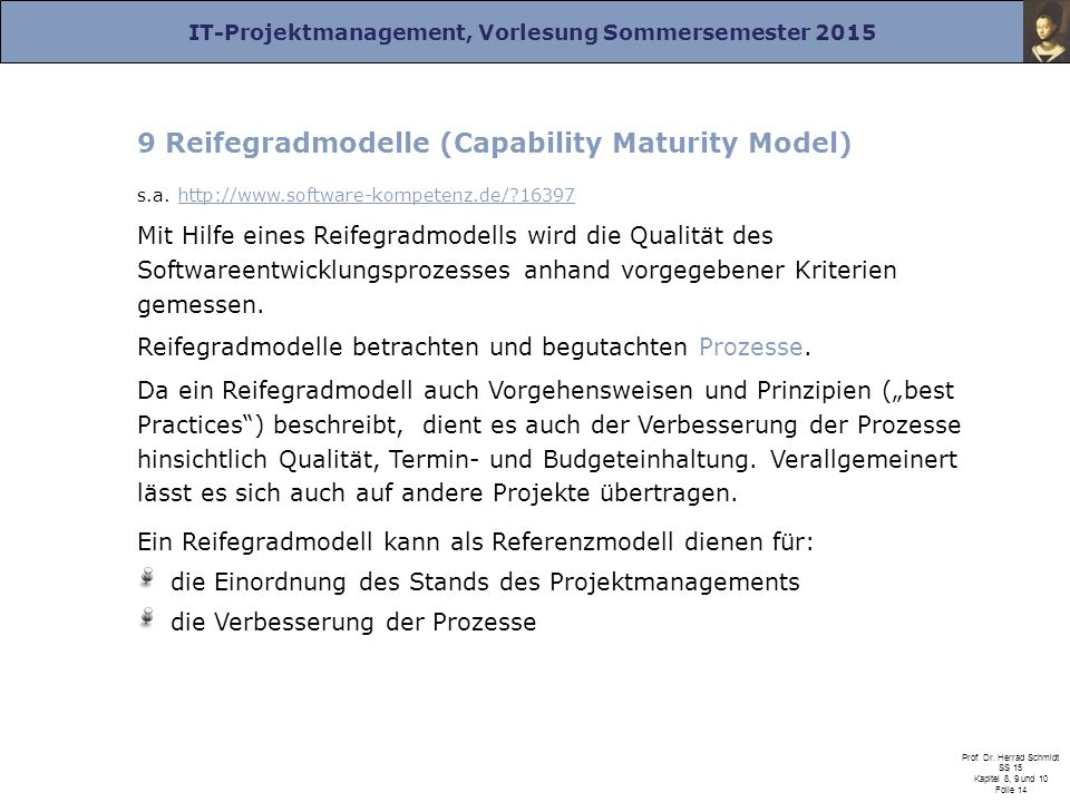 9 Reifegradmodelle (Capability Maturity Model)