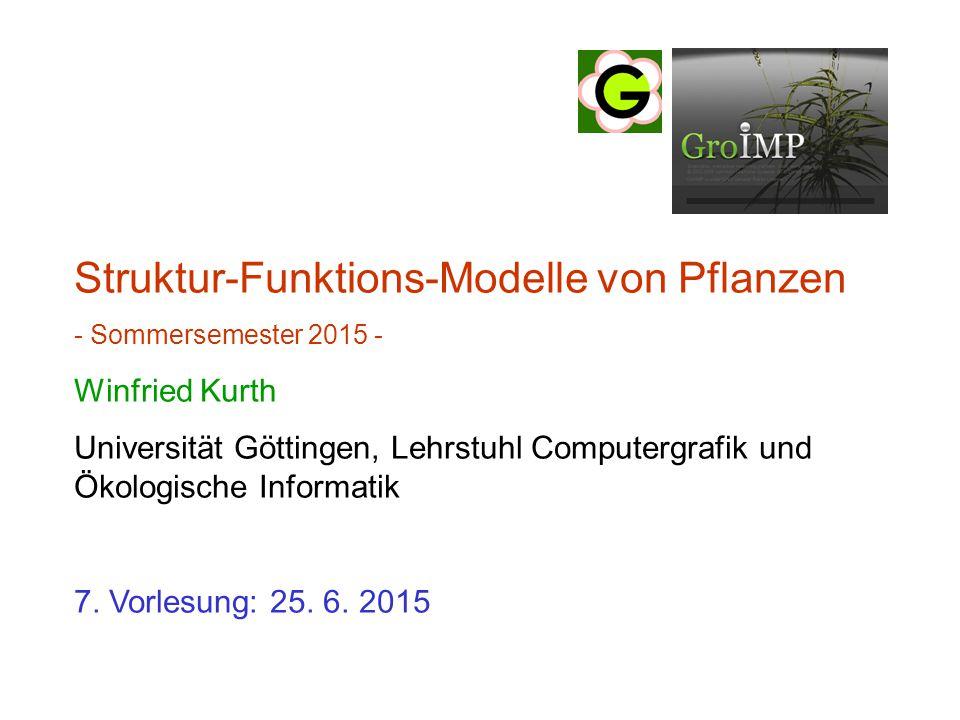 Struktur-Funktions-Modelle von Pflanzen