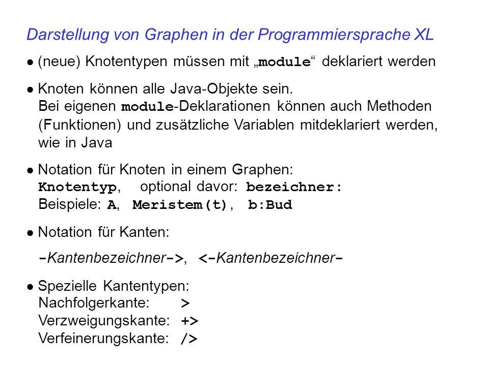 Darstellung von Graphen in der Programmiersprache XL