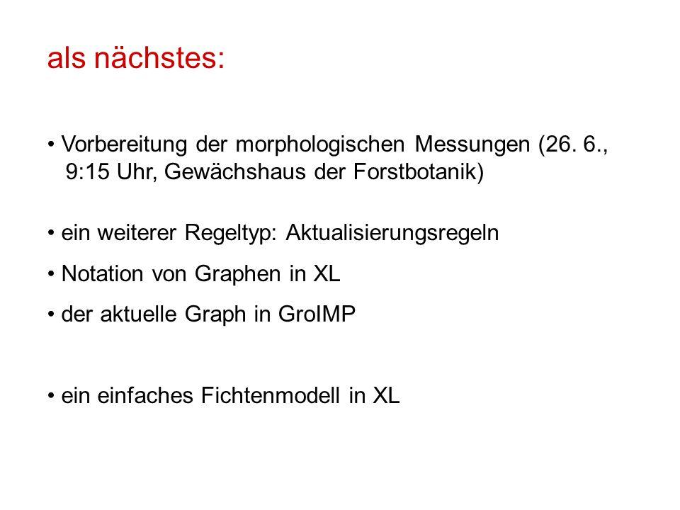 als nächstes: Vorbereitung der morphologischen Messungen (26. 6.,