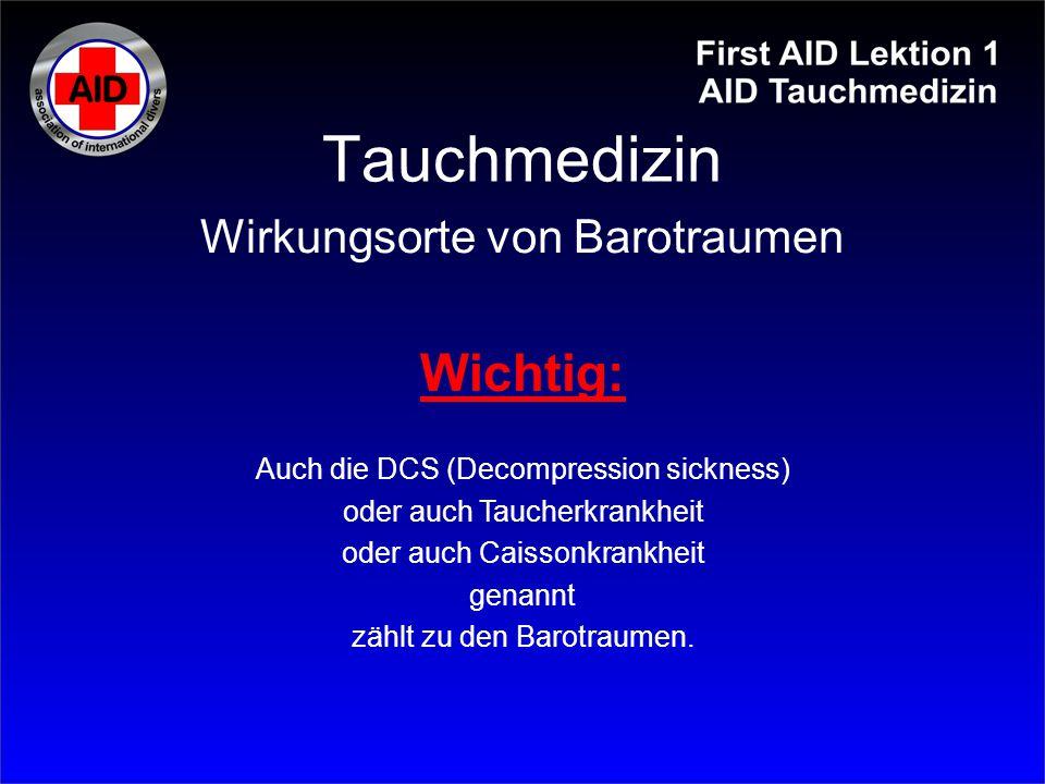 Tauchmedizin Wichtig: Wirkungsorte von Barotraumen