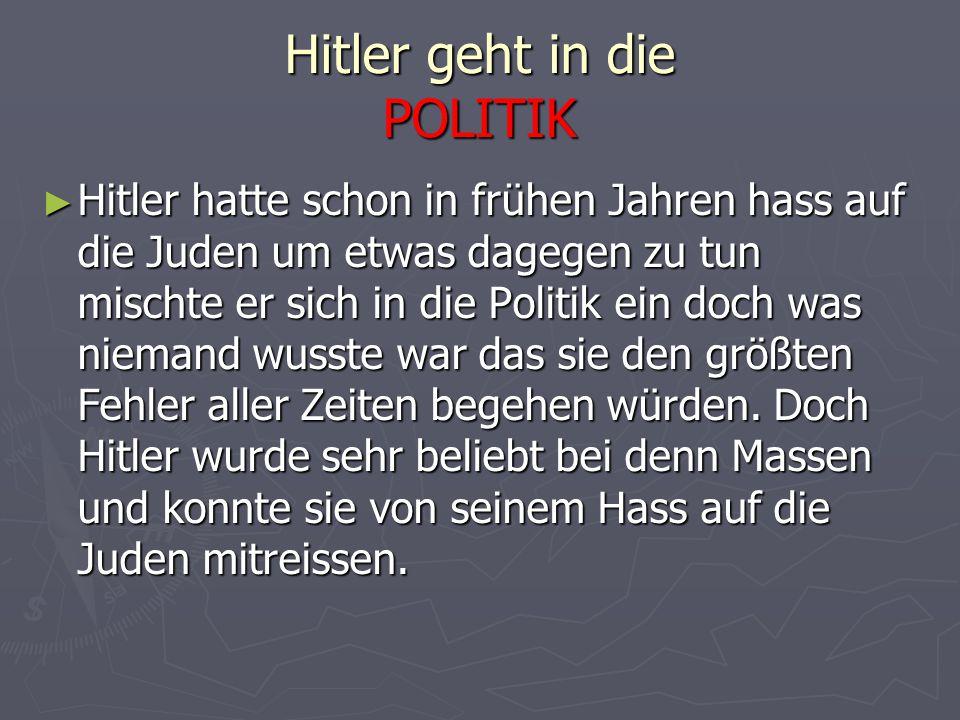 Hitler geht in die POLITIK