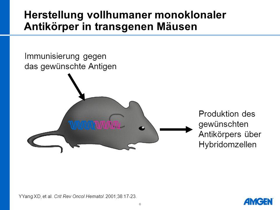 Herstellung vollhumaner monoklonaler Antikörper in transgenen Mäusen