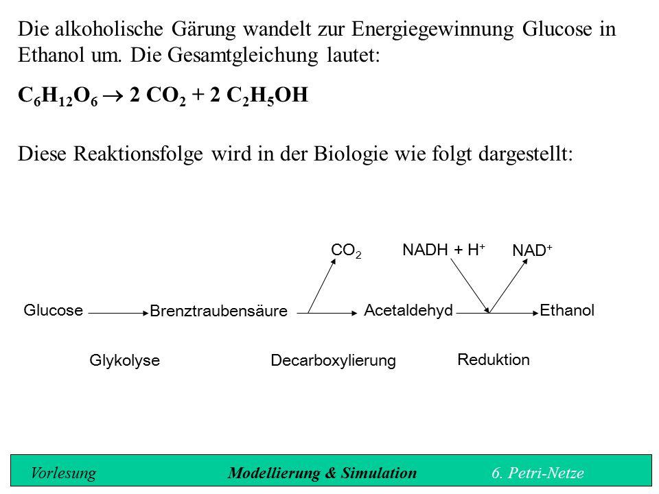 Diese Reaktionsfolge wird in der Biologie wie folgt dargestellt: