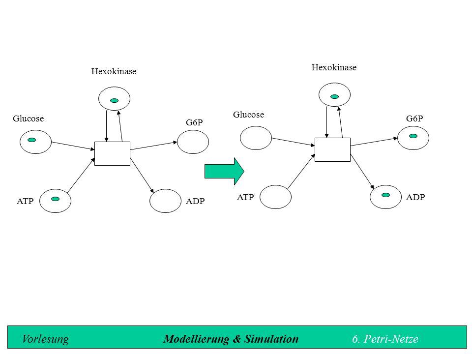 Vorlesung Modellierung & Simulation 6. Petri-Netze
