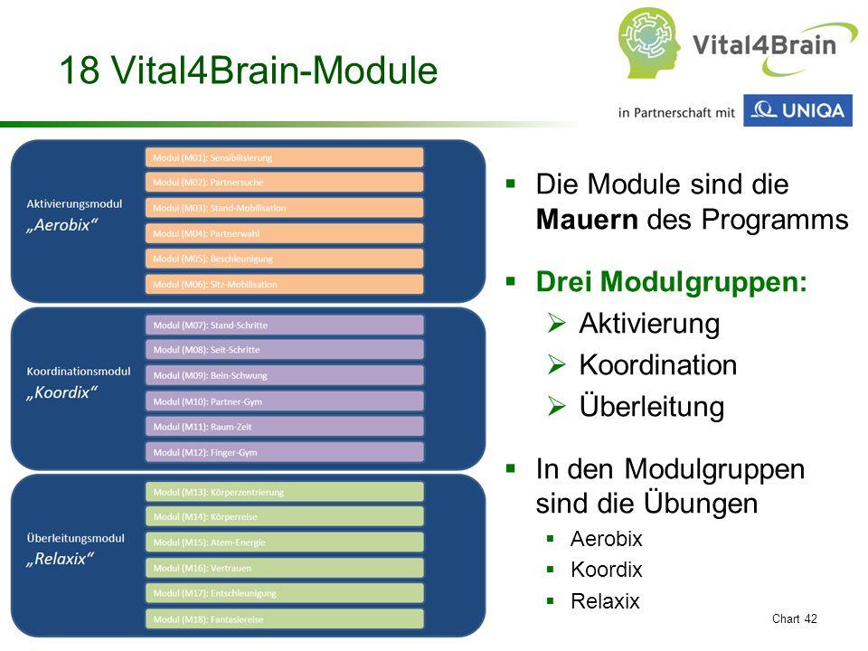 18 Vital4Brain-Module Die Module sind die Mauern des Programms