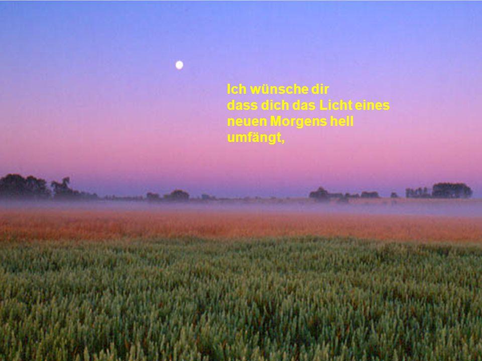 Ich wünsche dir dass dich das Licht eines neuen Morgens hell umfängt,
