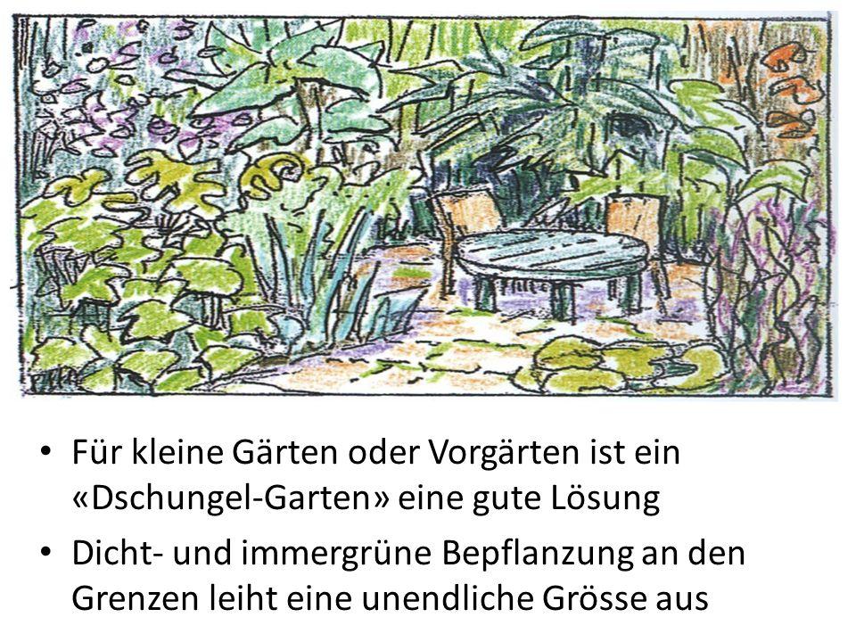 Für kleine Gärten oder Vorgärten ist ein «Dschungel-Garten» eine gute Lösung