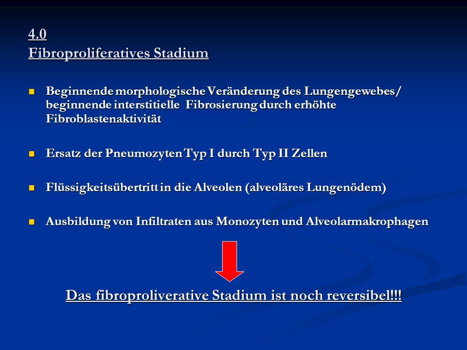 4.0 Fibroproliferatives Stadium