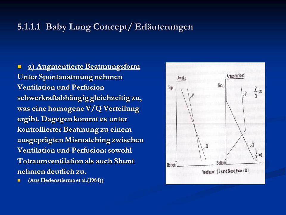 5.1.1.1 Baby Lung Concept/ Erläuterungen
