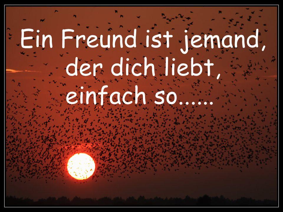Ein Freund ist jemand, der dich liebt, einfach so......