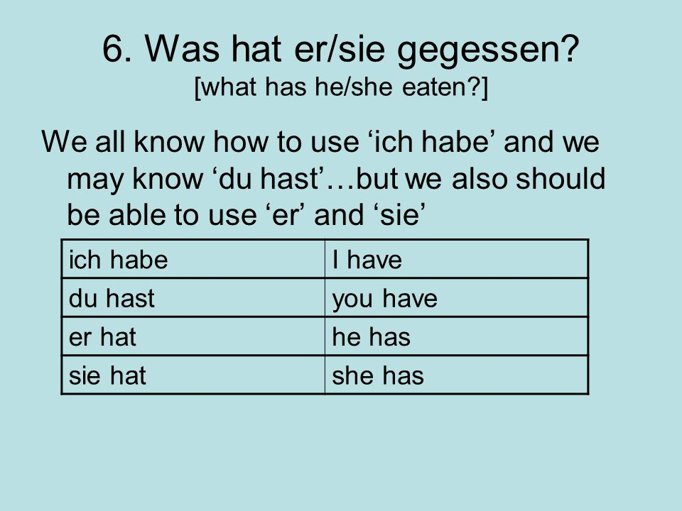 6. Was hat er/sie gegessen [what has he/she eaten ]