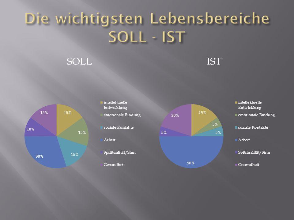 Die wichtigsten Lebensbereiche SOLL - IST