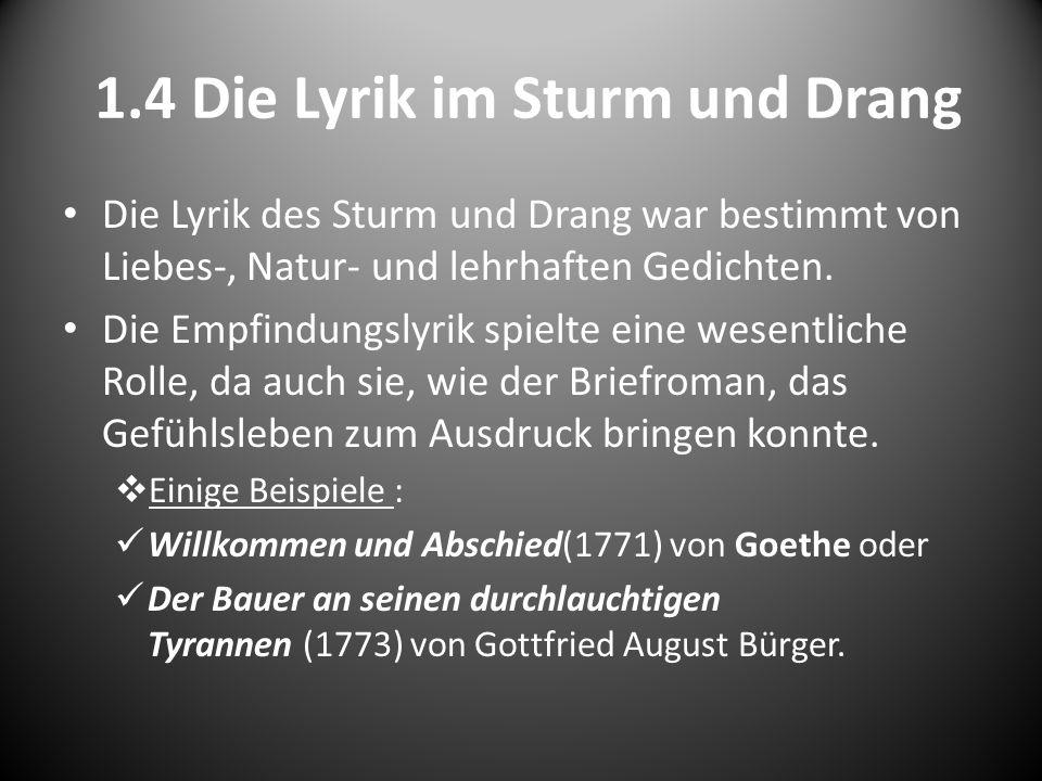 1.4 Die Lyrik im Sturm und Drang