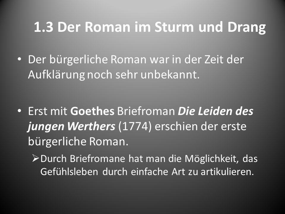 1.3 Der Roman im Sturm und Drang