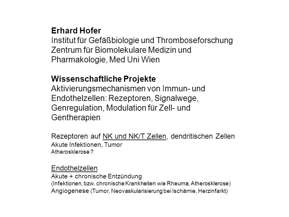 Institut für Gefäßbiologie und Thromboseforschung