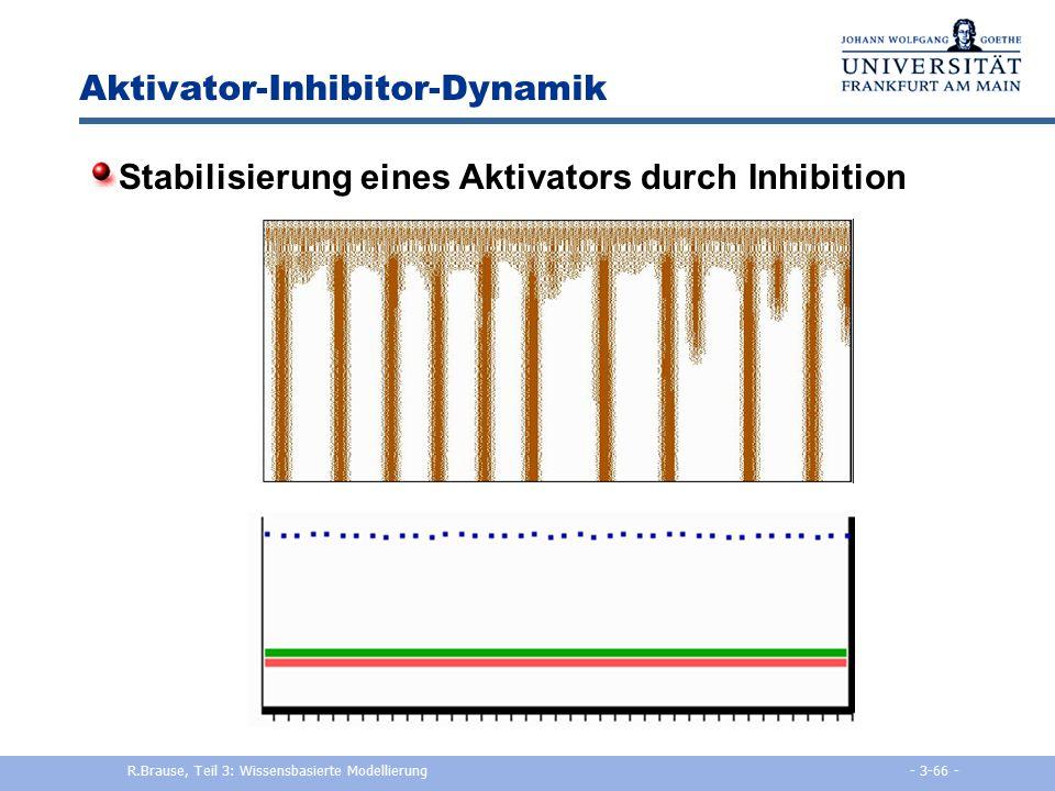 Aktivator-Inhibitor-Dynamik