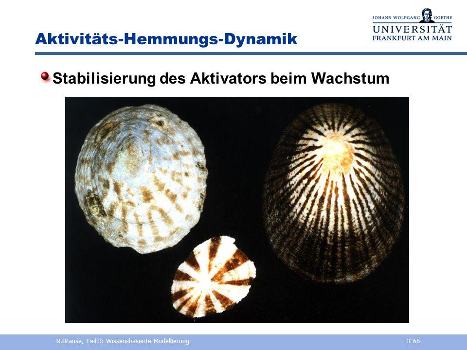 Aktivitäts-Hemmungs-Dynamik