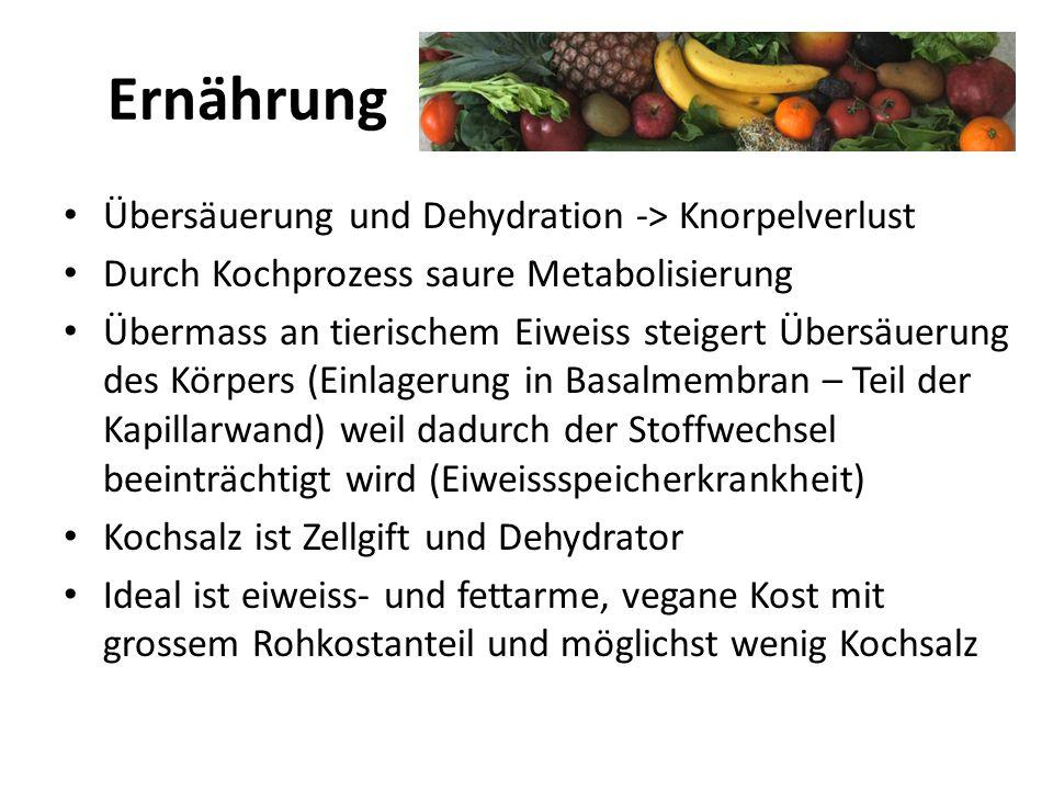 Ernährung Übersäuerung und Dehydration -> Knorpelverlust