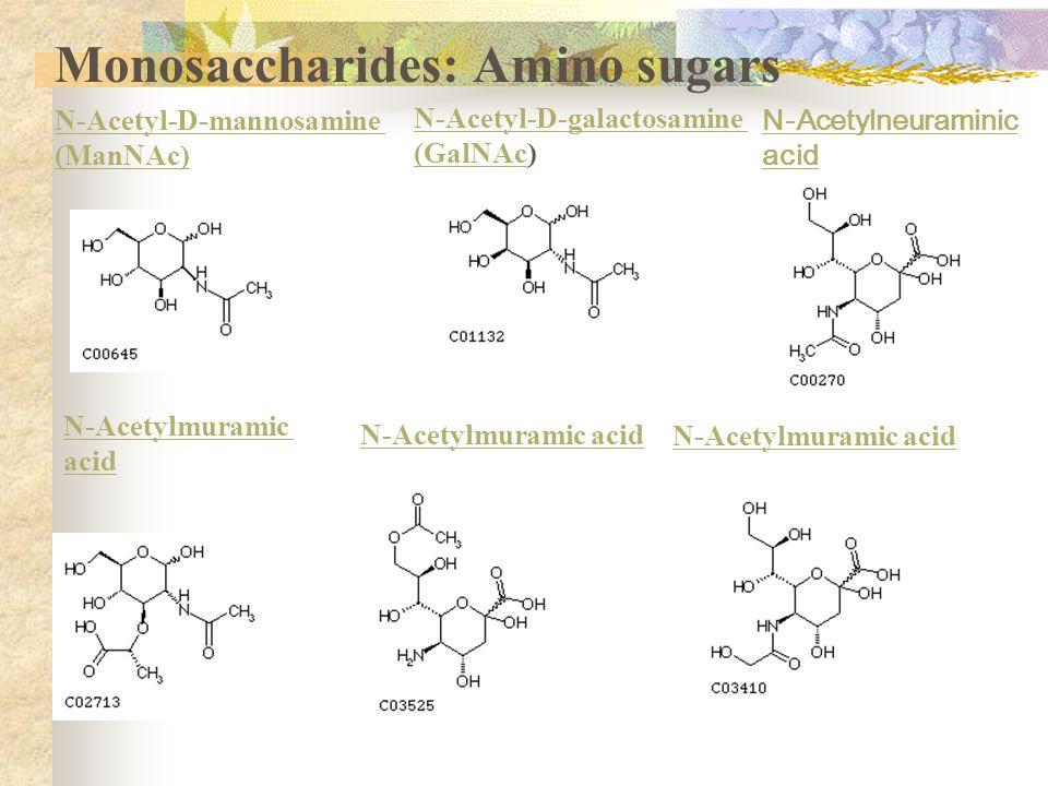 Monosaccharides: Amino sugars