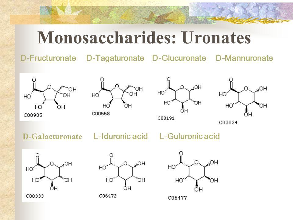 Monosaccharides: Uronates
