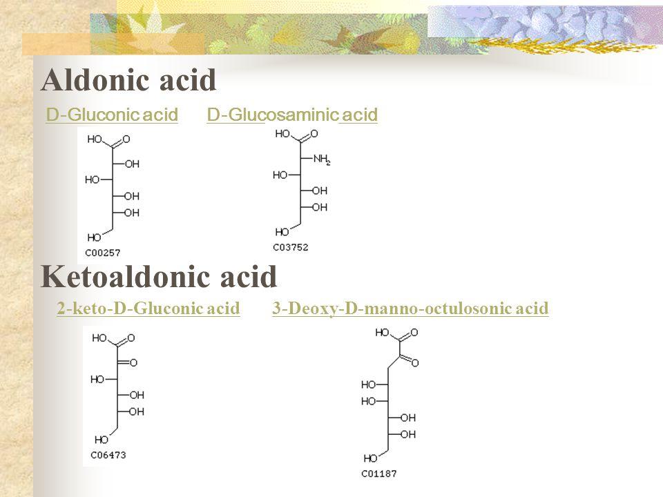 Aldonic acid Ketoaldonic acid D-Gluconic acid D-Glucosaminic acid