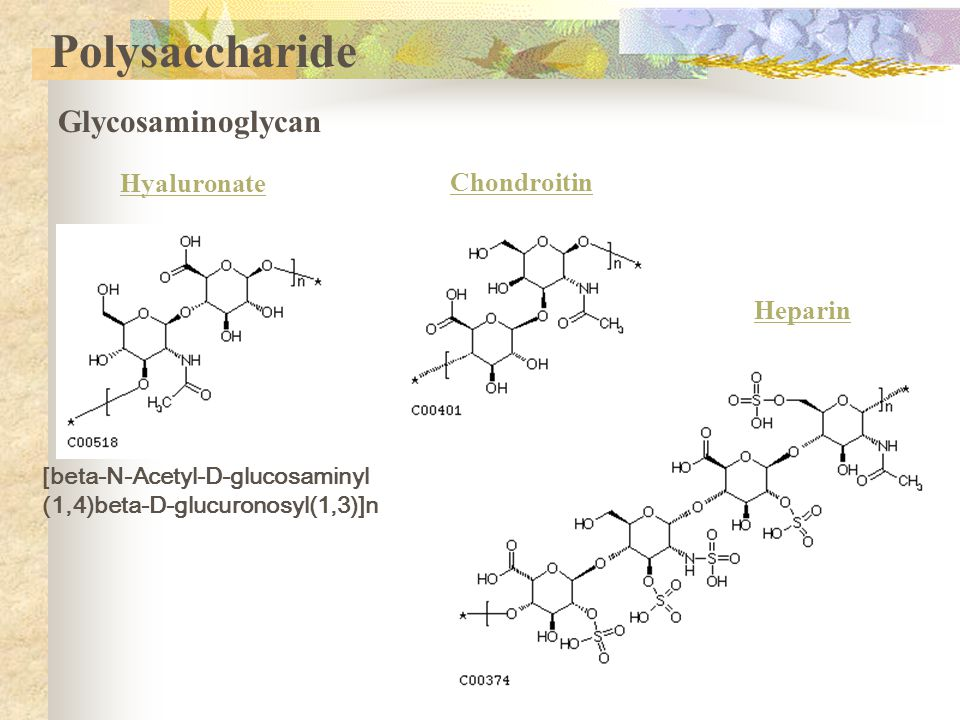 Polysaccharide Glycosaminoglycan Hyaluronate Chondroitin Heparin