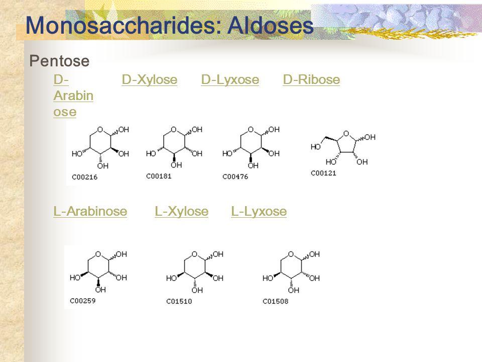 Monosaccharides: Aldoses