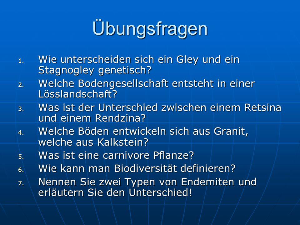 Übungsfragen Wie unterscheiden sich ein Gley und ein Stagnogley genetisch Welche Bodengesellschaft entsteht in einer Lösslandschaft