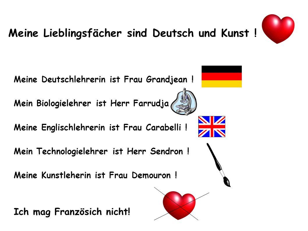 Meine Lieblingsfächer sind Deutsch und Kunst !