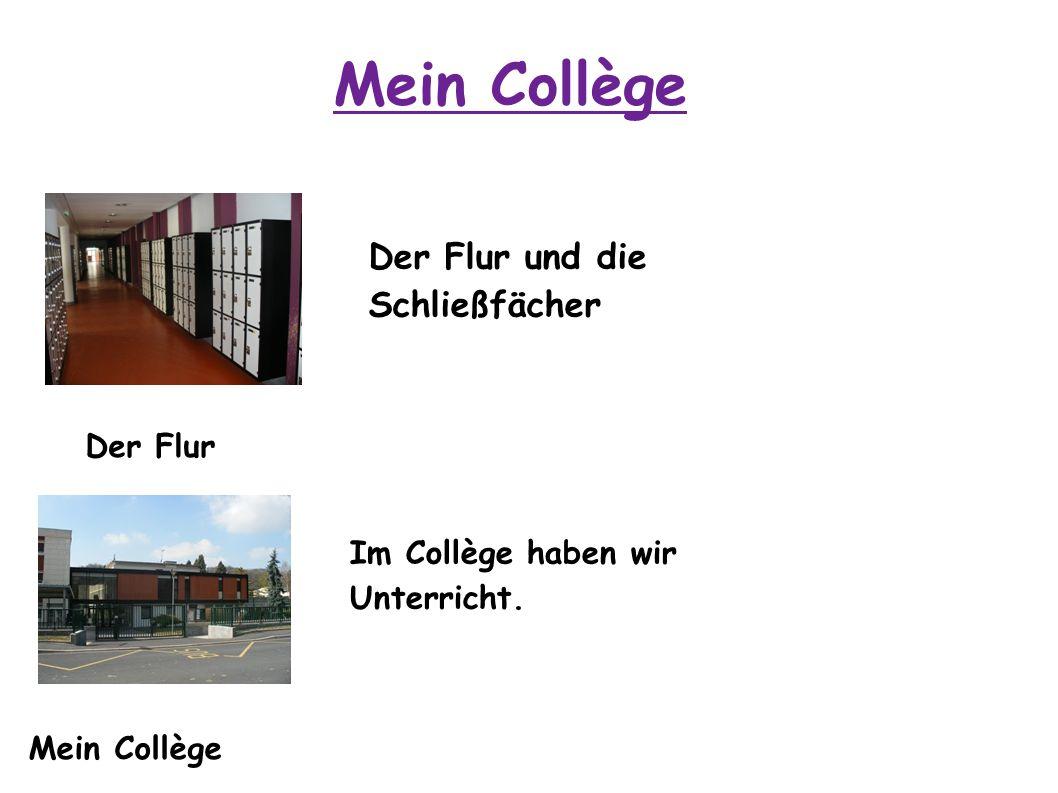 Mein Collège Der Flur und die Schließfächer Der Flur